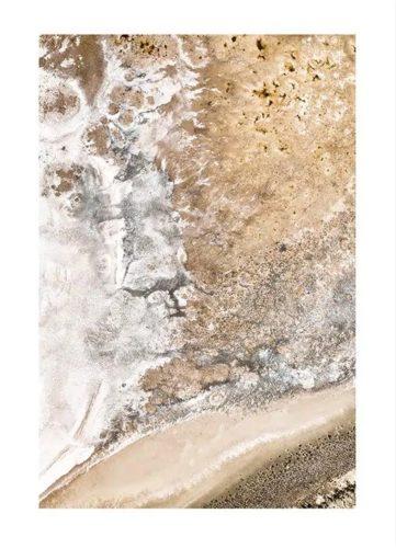 GOLDEN SALT LAKE POSTER